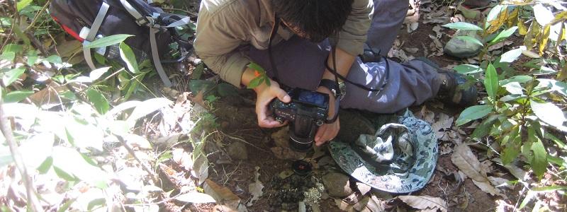 Cambodia: SLP Environmental Offer High Quality ESIA Services Across Cambodia