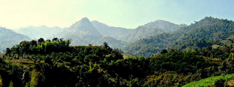 Environmental, Ecology, Socio-economic Baseline Surveys